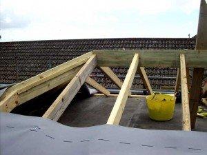 roofcut_ridge
